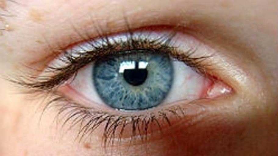 Das Auge, Das Alles Sieht