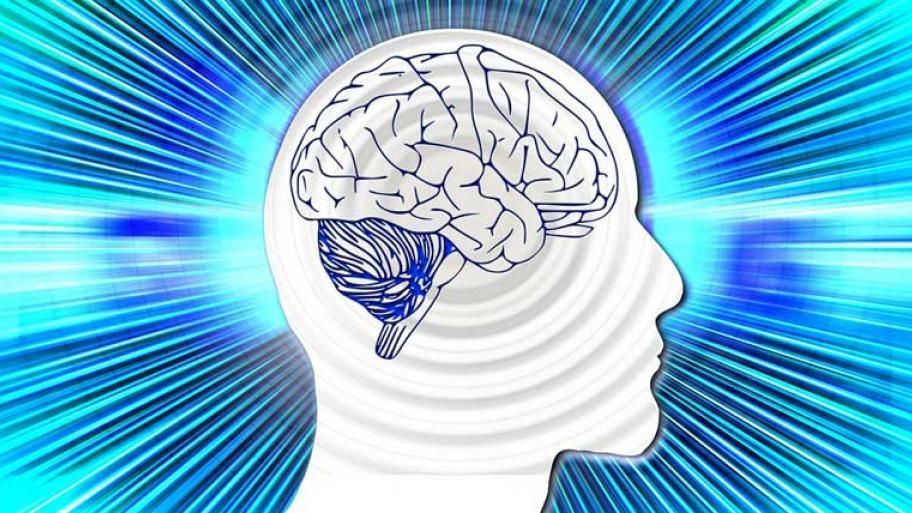 Wie funktioniert... das Gehirn? | kindersache